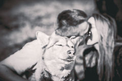 Portrait of husky dog outdoor with kissing couple behind Stock Photo