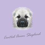 Portrait illustré par vecteur de berger asiatique central Dog Photographie stock