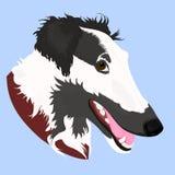 Portrait illustré par vecteur de chien de barzoï Visage mignon de chien domestique de chien-loup russe sur le fond bleu illustration de vecteur