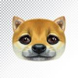 Portrait illustré par vecteur de chien de Shiba Inu illustration de vecteur