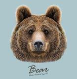 Portrait illustré par vecteur de fond de bleu Bear on illustration stock