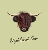 Portrait illustré par vecteur des bétail des montagnes illustration stock