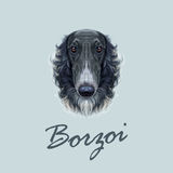 Portrait illustré par vecteur du chien russe de barzoï illustration stock