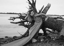 Portrait image of model girl wrapped in fabric standing near fallen tree on the beach Royalty Free Stock Photos