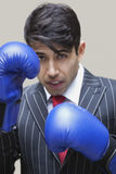 Portrait of an Indian businessman wearing blue boxing gloves against gray background Stock Image
