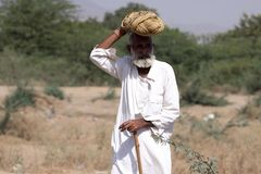 Old Rajasthani man with turban. Stock Images