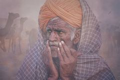 Old Rajasthani man against the background of his camels. Portrait indian man attended the annual Pushkar Camel Mela Royalty Free Stock Photography