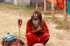Portrait of an Indian Sadhu Royalty Free Stock Image