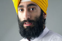 Portrait of Indian sikh man with bushy beard Stock Image