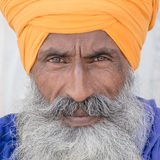 Portrait of Indian sikh man Stock Photography