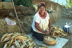 Portrait of Indian woman during peeling corn. Guatemala, Huehuetenango Department, Xolpic Village. Quiche Indian woman peeling on the yard of her house in the stock image