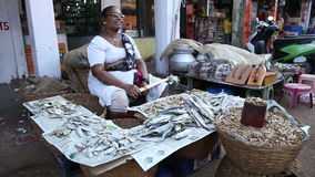 Portrait of Indian woman by a street stand at market in Goa. stock footage