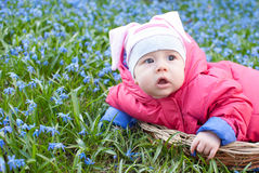 Portrait of infant baby in flowers Stock Images