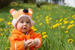 Portrait infant baby fox hat Royalty Free Stock Image