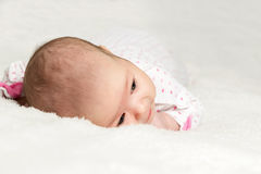 Portrait of infant closeup view from above Royalty Free Stock Image