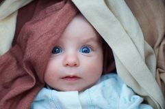 Portrait of a infant Royalty Free Stock Photo