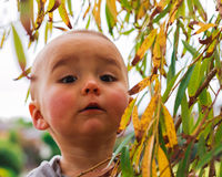 Portrait of a inquisitive little girl. Horizontail photo, photo took in New Zealand, girl is 19 month Stock Images