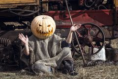 Portrait of Jack-lantern with a pumpkin on his head is sitting n Stock Images