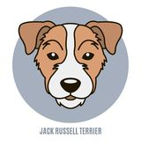 Portrait of Jack Russell Terrier. Vector illustration in style o Stock Images