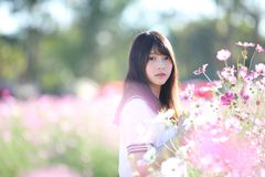 Portrait of Japanese school girl uniform with cosmos flower. Portrait of Japanese school girl uniform with pink cosmos flower stock images