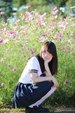 Portrait of Japanese school girl uniform with cosmos flower royalty free stock image