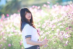 Portrait of Japanese school girl uniform with cosmos flower stock photography
