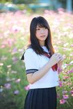 Portrait of Japanese school girl uniform with cosmos flower stock photos