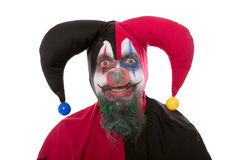 Portrait of a Jester,  on white Stock Photos