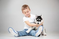 Portrait of a joyful little boy having fun with siberian husky puppy on the floor at studio. The animal, friendship, love, pet, childhood, happiness, dog stock photos