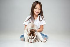 Portrait of a joyful little girl having fun with siberian husky puppy on the floor at studio royalty free stock images
