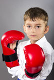 Portrait of a karate kid  wearing red gloves ready to fight Stock Images