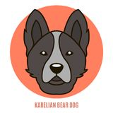Portrait of Karelian Bear Dog. Vector illustration in style of f Royalty Free Stock Photography