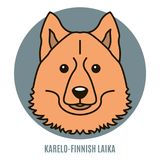 Portrait of Karelo-Finnish Laika. Vector illustration in style o Royalty Free Stock Images