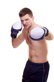 Portrait of a kick boxer Stock Image