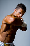 Portrait of a kick boxer in fighting stance. Stock Images