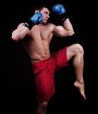 Portrait of kickboxer Royalty Free Stock Photo