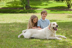 Portrait of kids with pet dog at park Stock Photography