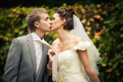 Portrait of kissing newlyweds Stock Images