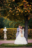 Portrait of kissing newlyweds Royalty Free Stock Images
