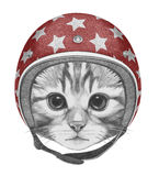 Portrait of Kitty with Helmet. Stock Image