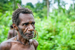 The Portrait Korowai man on the natural green forest background. Royalty Free Stock Images