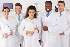 Portrait Of Laboratory Technicians Standing In Group Royalty Free Stock Images