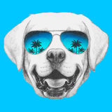 Portrait of Labrador with mirror sunglasses. Hand drawn illustration Royalty Free Stock Images