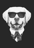 Portrait of Labrador in suit. Hand drawn illustration Stock Photo