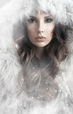 Portrait of a lady winter wearing a fur coat. Portrait of a calm lady winter wearing a fur coat royalty free stock images