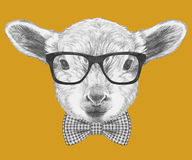 Portrait of Lamb with glasses and bow tie. Hand drawn illustration Royalty Free Stock Photos