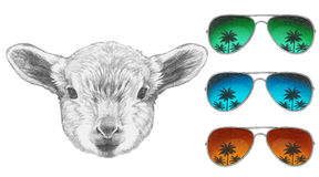 Portrait of Lamb with mirror sunglasses. Hand drawn illustration Royalty Free Stock Photography