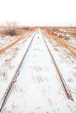 Portrait Landscape of Snowy Tracks Stock Images