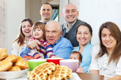 Portrait of  large  family Royalty Free Stock Images
