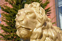 Portrait of a large golden lion statue Royalty Free Stock Images